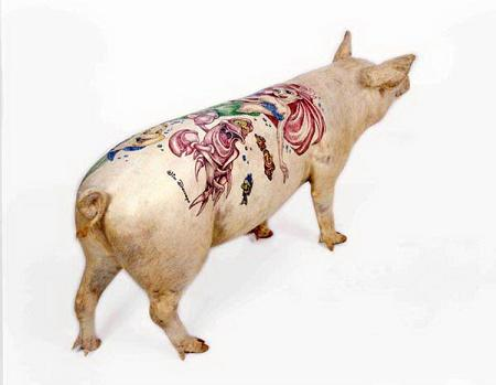 Tattooed Pigs